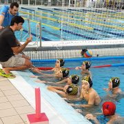 WP Brains Infantil